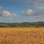 Hay Silage Straw Field Crops